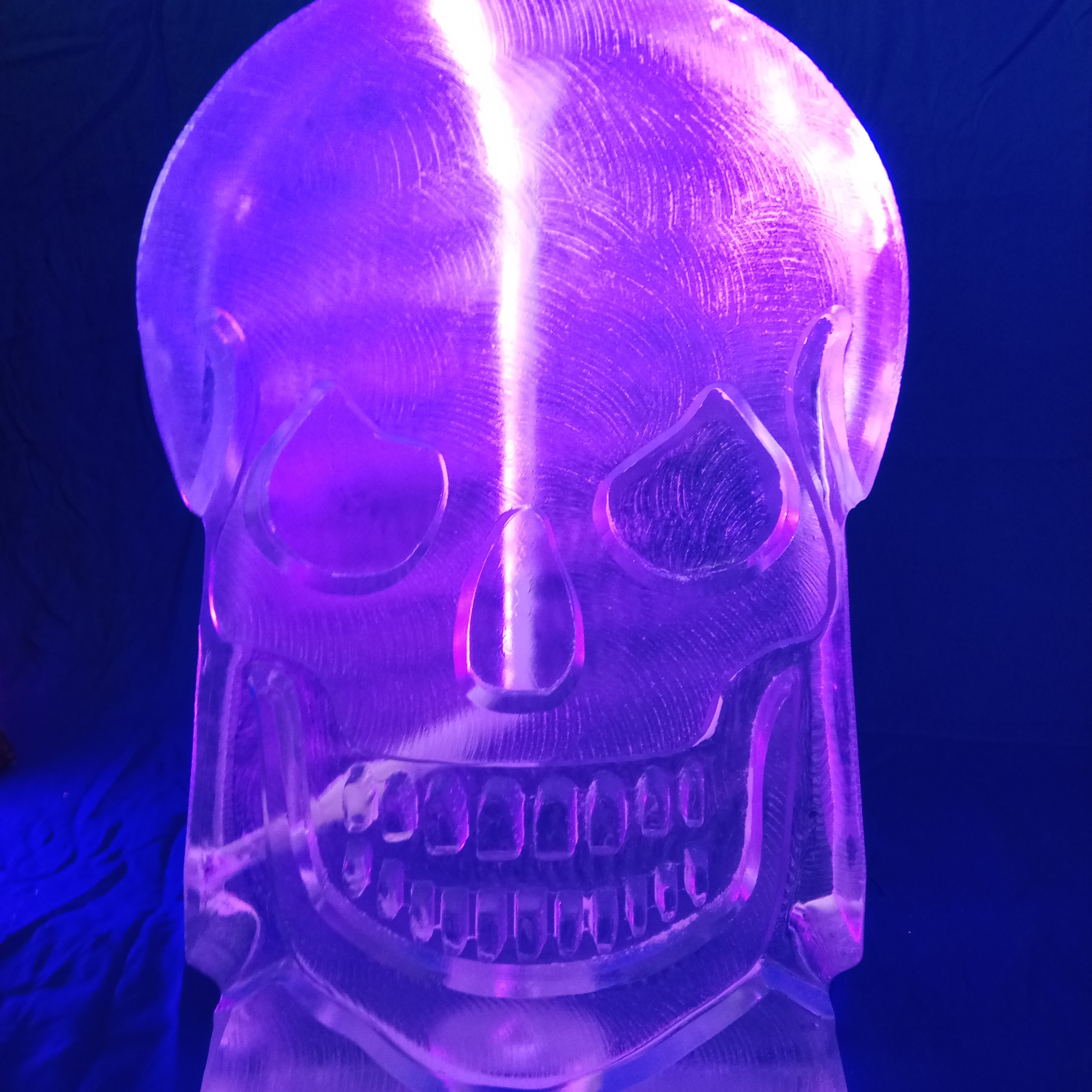 Halloween skull vodka luge